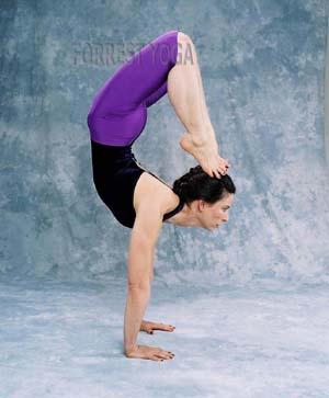 Amazing Yogasana