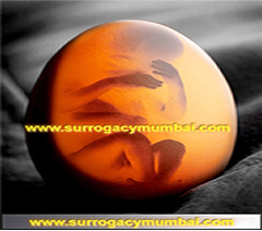 Indian surrogacy agencies,surrogacy india cost,rotunda surrogacy